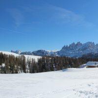 411 dal Rifugio Flora Alpina al Rifugio Fuciade